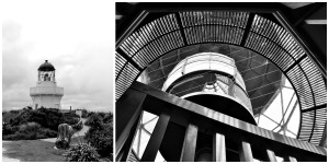 manukau-heads-collage